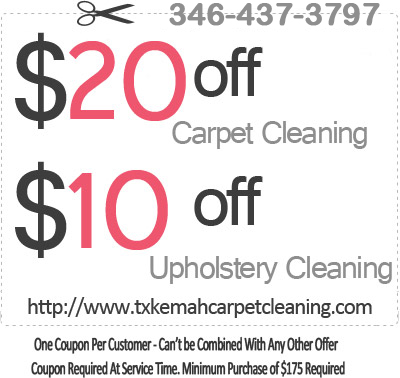 Expert Professional Upholstery Cleaning Home Steam